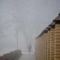 Исчезающий в тумане :: Андрей Lyz