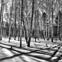 Зимний день на Урале :: Борис Соловьев