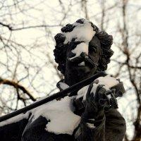 Маэстро зимой  4 :: Сергей