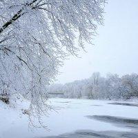 зимушка зима :: Nelli