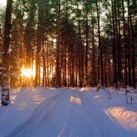 На закате.. :: Алла Кочергина