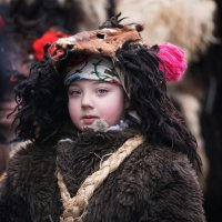 Малий медвідь :: Степан Карачко