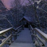 Затерянный в снегах :: Ольга