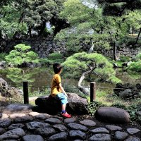 Hibiya Park Токио :: Swetlana V