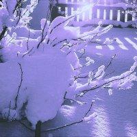 солнечный денёк :: леонид логинов