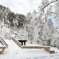 Снежный мотив :: Сергей Тарабара