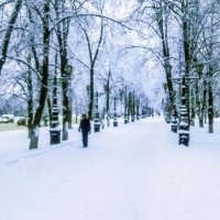 Снег (Уфа) :: Георгий Морозов