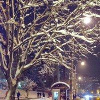 Ночная улица :: Сергей Тарабара