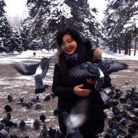 Тот же парк ,те же голуби :: Сергей
