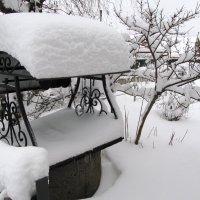 вот такая снежность ... :: Анатолий Островский