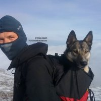 Человек собаке - друг :: Михаил Шабанов