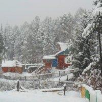 А снег идет :: Игорь Ушаков