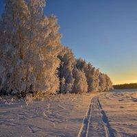 Январский закат :: Геннадий Ячменев