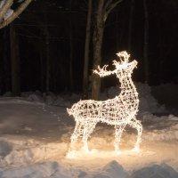 зимняя скульптура :: Наталья Литвинчук