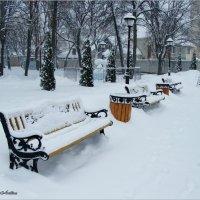 Снежно :: °•●Елена●•° Аникина♀