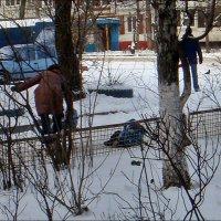 Ой, выпал сынок из санок, но это ничего - дело житейское! :: Нина Корешкова