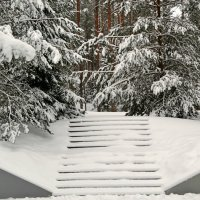 Зимний сюжет :: Милешкин Владимир Алексеевич