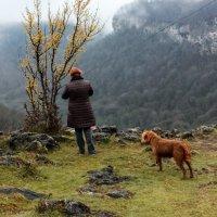 Ущелье Мишуко. Незабываемый  преданный пес... :: ирина )))