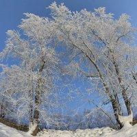 Зимний день :: Борис Гуревич