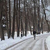 В Москву пришла настоящая зима, с морозом, со снегом! :: Татьяна Помогалова
