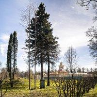 Александровский парк в мае. Санкт-Петербург :: Елена Кириллова
