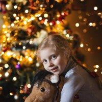 В ожидании Деда Мороза)))) :: Елена Рябчевская