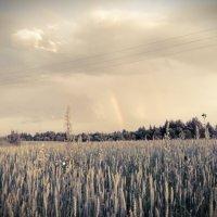 Лето, радуга после мелкого, моросящего дождя! :: Дмитрий Скачков