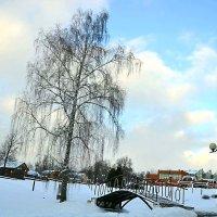 Зима пришла. :: Михаил Столяров