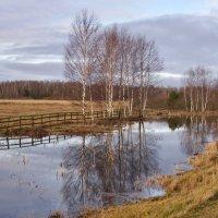 Landscape :: SvetlanaScott .