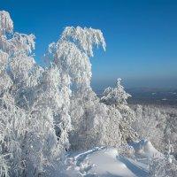 Белый, белый иней :: vladimir Bormotov