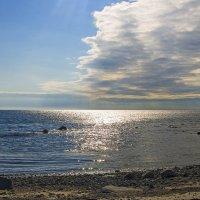 Трехцветное море :: Сергей Фомичев