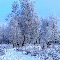 Зимний пейзаж. :: Борис Митрохин