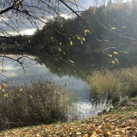 Осеннее солнышко играет :: Ekaterina Podolina