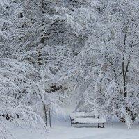 Старая скамейка... :: Mariya laimite