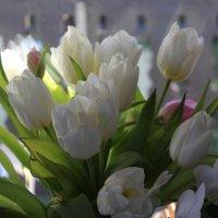 Букет для Татьян ! :: Mariya laimite