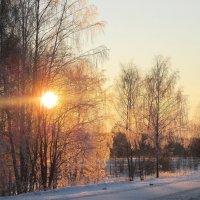 Морозный вечер. :: Михаил Попов