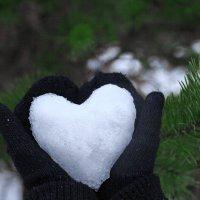 Ледяное сердце :: Павел Качанов