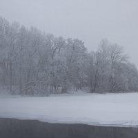 туманный восход :: Сергей Алексеев