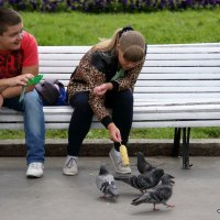 она кормит, а я снимаю :: Олег Лукьянов