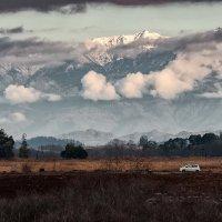 Абхазия -зима :: Александр Криулин