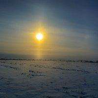 Зимнее солнце :: Сергей Шаталов