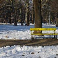 Спокойствие в парке ! ;) :: Вен Гъновски