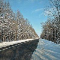 Зима. :: Казимир Буйвис