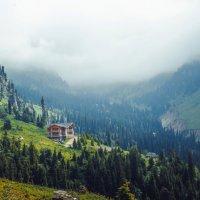 Туман в горах :: Lora Marenkova