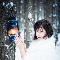 Тепло огня :: Николай Кулин