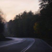 Пасмурное утро :: Katerina Sheglova