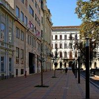 Площадь Свободы в Будапеште :: Денис Кораблёв