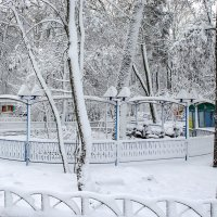 Заснеженный парк :: Сергей Тарабара