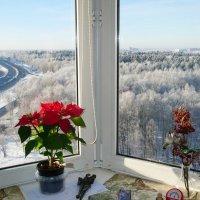 А за окном..Мороз и Солнце. (антициклон,зима) :: Alexey YakovLev