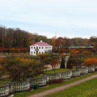 Осень в Нижнем парке. :: Лия ☼